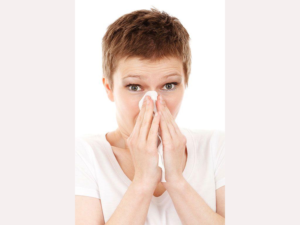 Come Uccidere Acari Della Polvere scopri i rimedi per l'allergia agli acari della polvere